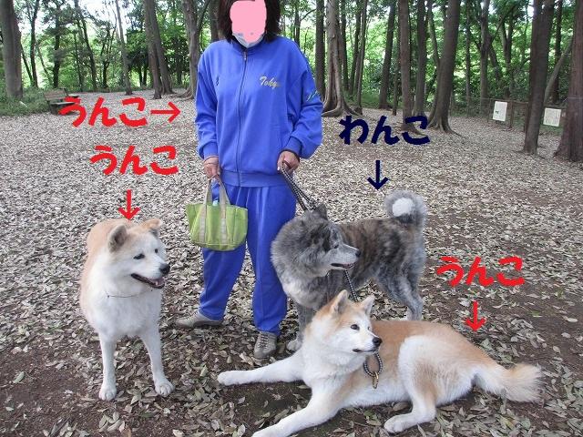 IMG_0341 (2).jpg